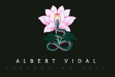 Albert Vidal | 2010